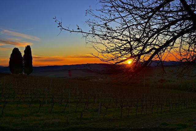 photo by Flickr Antonio Cinotti