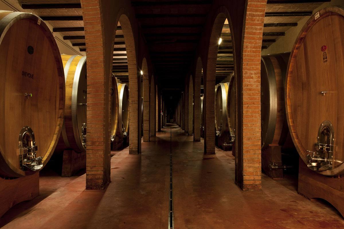 The cellar at Dievole