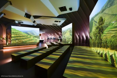The world's largest wine museum – and Dievole is there