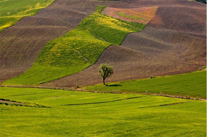 Chianti Valley