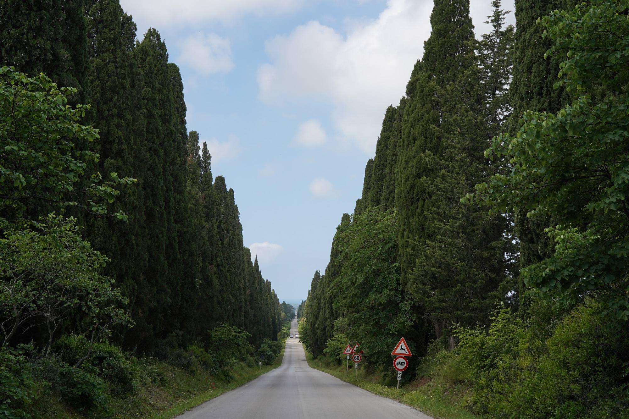 Visitare Bolgheri: Sole, Mare & Vino