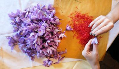 Il cibo artigianale in Toscana: alcuni produttori da visitare