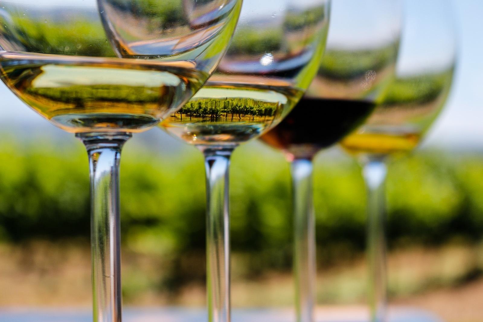 Bicchieri di Vino: come scegliere quello giusto